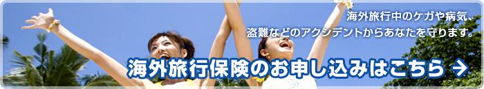trip_banner